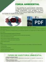Resumen Auditoria Ambiental