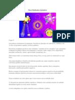 kupdf.net_mesa-radionica-quantica (1).pdf