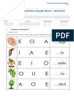 Diagnostic o lenguaje nivel inicial