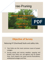 Report 11 Tree Pruning
