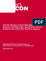 Activity Choices of Internally Displaced Persons and Returnees