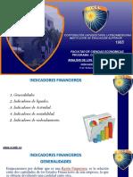 UNIDAD 3 INDICADORES FINANCIERO 2019