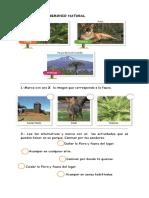 ACTIVIDADES PATRIMONIO CUADERNO.docx