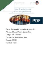 Revisión de Un Informe de Practica Pre