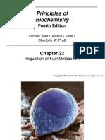 ch22.pdf