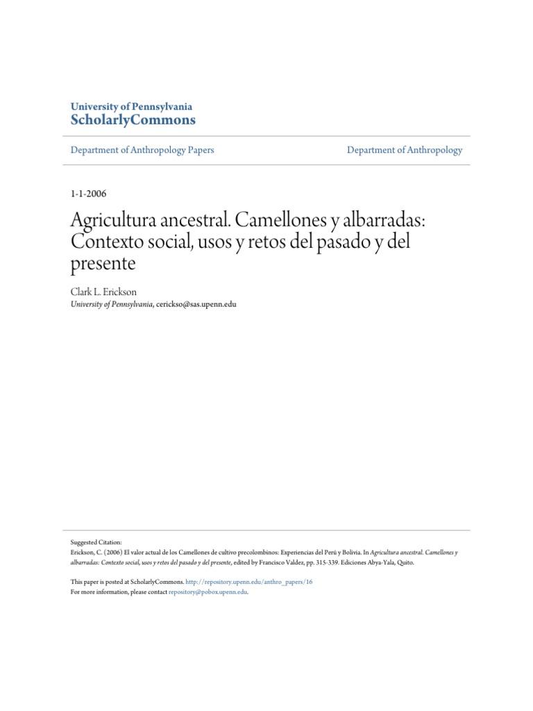 Agricultura Ancestral Camellones Y Albarradas Contexto
