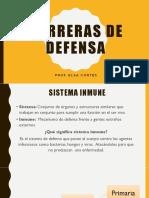 Barreras de Defensa