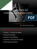 Dr Hector g. Mi -Patologia