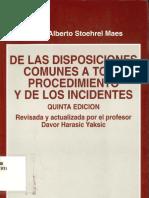 De Las Disposiciones Comunes a Todo Procedimiento y de Los Incidentes - Copia