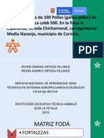 Formato Plantilla Presentación Power Point MODIFICADO 2019