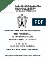 Diaz Cortez Guillermo