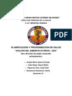 ANALISIS DE SITUACION EN SALUD.docx