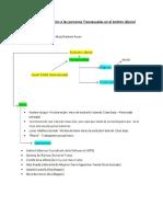 ESCALETA_DOCUMENTAL_GUION.pdf