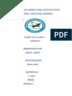 analisi de la conducta 6.doc.docx