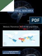 11. Cerebral Malaria