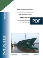 ArklowMeadowReport.pdf