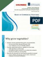 Basics of Vegetable Production