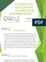 Proyecto Incentivo Del Cultivo de Piña Md2 En