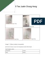 Lab report 5.pdf