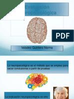 eva neuro-2
