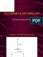 TRANSPORT &; Function Thyroid Hormones