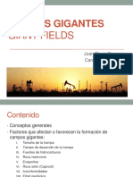 239093494 Campos Gigantes
