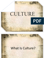 Culture Report Chapter 1