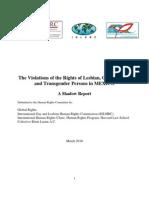 Violaciones a los derechos de lesbianas, gays, bisexuales y trans en México (informe sombra)