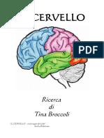 Il cervello - Ricerca di Tina Broccoli.pdf