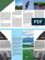 homeworl8- hometown brochure
