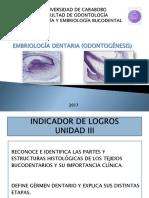 Embriologia Dentaria Odontogenesis 2017.Yenny