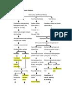 Patofis Sindrom Geriatri