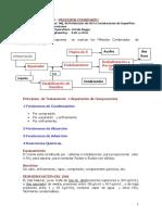 Procesos Combinados-Tratamiento Del Gas