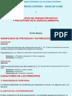 19.PREVENCION Y PRECAUCION.FUNDAMENTOS.pdf