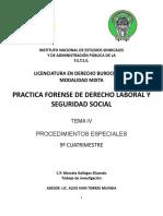 Trabajo de Investigacion Practica Forense Derecho Laboral y Seguridad Social