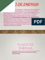 Flujos de Energia 23