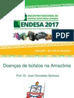 2 Doenças de Búfalos Na Amazônia - José Diomedes