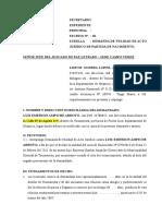 NULIDAD DE ACTO JURIDICO.docx