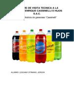 INFORME CASSINELLI.docx