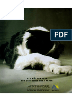 Anúncio cão