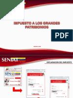 Declaracion de Impuesto a los Grandes patrimonios  Presentacion CE (2).pdf