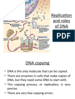 Replication and Roles of DNA