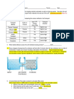 cell processes study guide  key