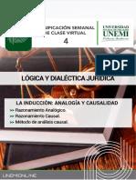 TEMA 4 La Inducción Analogía y Causalidad