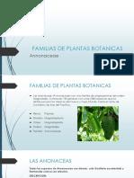 FAMILIAS DE PLANTAS BOTANICAS.pptx