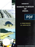 Marine Turtles of India