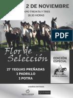 Catálogo Criollos Flor de Seleccion 2019