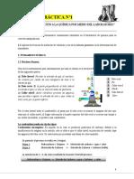 PRACTICA DE LABORATORIO 1 CICLO II 2019.pdf
