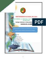 Informe Geologia Del Ecuador