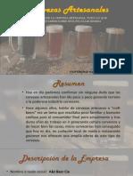 Cerveza Artesanal(3)